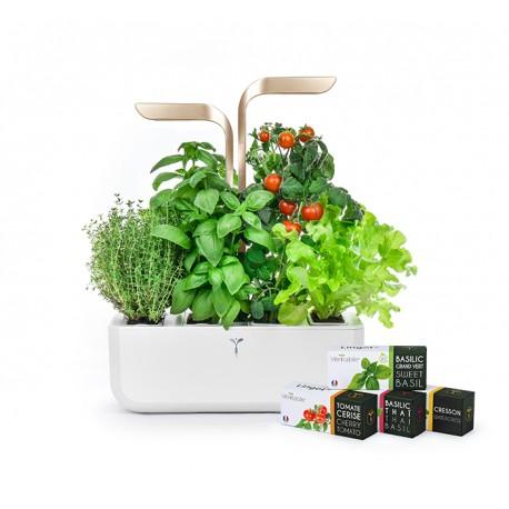 Connect Veritable Garden Moonlight Gold Organic Veritable Lingot Click & Grow Smart Garden Herbs Herb Grow light self watering planter indoor LED